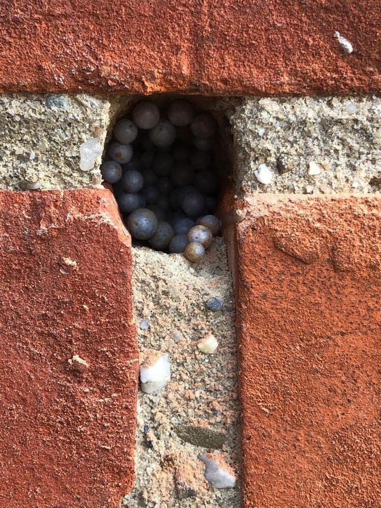 Realisatie 54m EPS Isomo Pearls spouwmuurisolatie te Borgloon